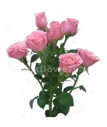 кустовая роза Мон Амур