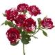кустовая роза Ароу Фоллис