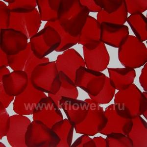 лепестки роз однотонные