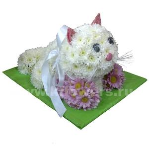 котята из цветов