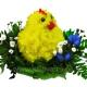 цыплёнок из цветов