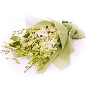 Букет цветов австралийский 13