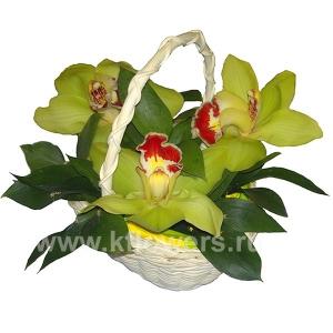 Корзина цветов 23