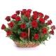Корзина цветов 24