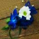 Браслет из цветов 34