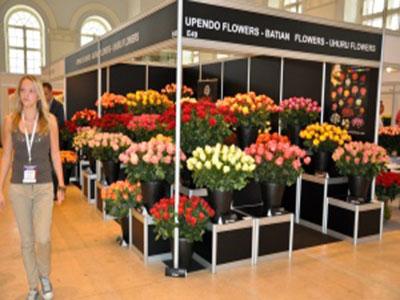 Плантация Батиан на выставке цветов, Москва 2011