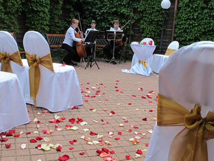 Романтичная россыпь розовых лепестков