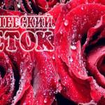 Интернет-магазин Королевский цветок