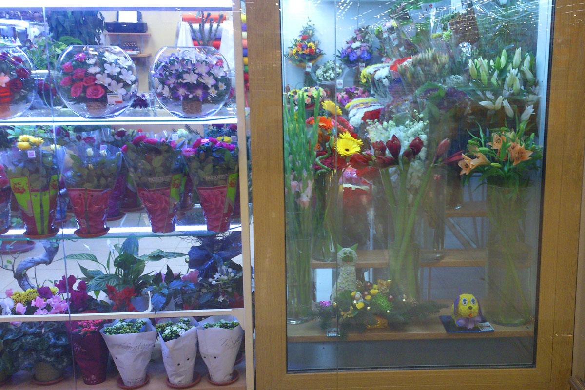 Всевозможные цветочные композиции предложены жителям Электростали и Нагинска