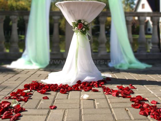 Дорогу молодоженов к счастливой совместной жизни устилали пурпурные лепестки роз