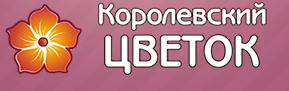 Королевский цветок