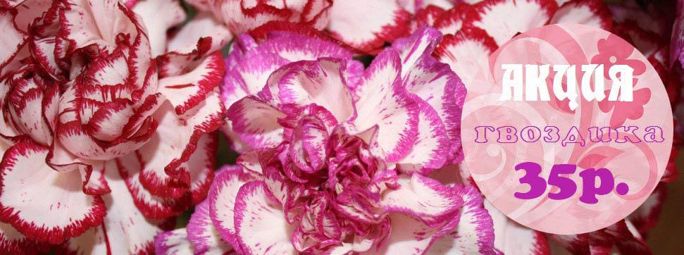 Цветочные магазины москва круглосуточно, стоимость букета нарцисс